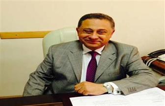 """سفير مصر بأستراليا لـ""""بوابة الأهرام"""": بدء فرز البطاقات الانتخابية وإرسالها لـ""""الهيئة الوطنية"""" في أقرب فرصة"""