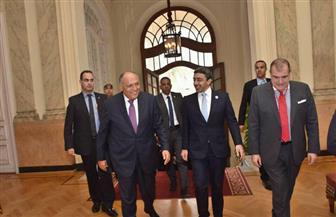 سامح شكرى يلتقي وزير وزير خارجية الإمارات بالقاهرة | صور