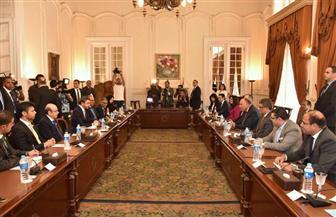 وزير خارجية الإمارات: مصر تعافت من محنة صعبة