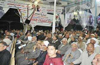 ٢٠ ألف مواطن يشاركون في مؤتمر الحركة الوطنية لدعم الرئيس السيسي | صور