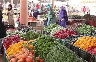 """تطوير سوق""""المنهل"""" بشرق مدينة نصر.. ولقاء ختامي لمشروع """"ادمجونا"""" في حي المرج"""