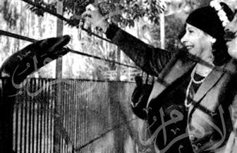 """ماري منيب """"راقصة ومغنية"""" و""""حماتي قنبلة ذرية"""" في صور نادرة"""