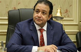 """رئيس """"حقوق الإنسان بالنواب"""" يطالب الحكومات والبرلمانات باتخاذ التدابير لحظر التحريض على ارتكاب أعمال إرهابية"""