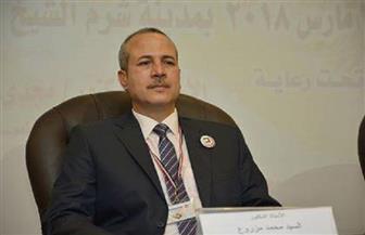 """130 بحثا علميا و22 مشروعا و3 ورش عمل بمؤتمر نوعية طنطا لـ""""تنمية سيناء"""" بشرم الشيخ"""