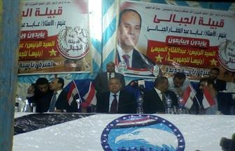 وكيل مجلس النواب: دعم الرئيس السيسي واجب وطني | صور
