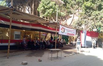 توافد المواطنين للتصويت وسط أجواء احتفالية في حدائق القبة | صور
