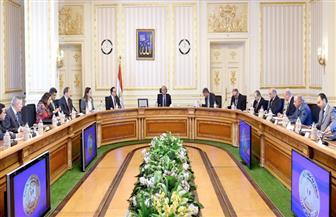 مصدر: لا يوجد نص دستورى صريح ينص على تقديم الحكومة لاستقالتها بعد الانتخابات
