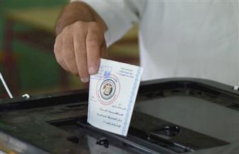 """صوتك حر: المشاركة الانتخابية """"ملحمة"""" تعكس وعي المصريين"""