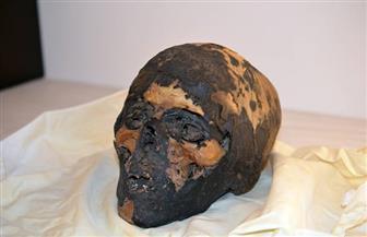 ضبط قطع أثرية مصرية ومصادرتها أثناء عرضها بصالة مزادات بمانهاتن الأمريكية