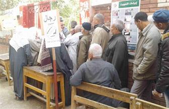 إقبال كبير من الناخبين على التصويت بلجان قرية برج مغيزل بمطوبس كفرالشيخ | صور