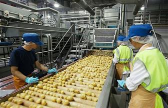 الجزايرلي: حصة مصر السوقية ضئيلة في أكبر ٢٠ دولة مستوردة للمواد الغذائية