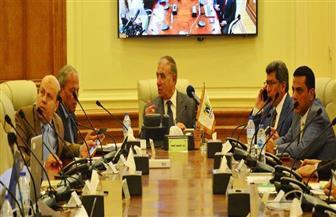 وزير التنمية المحلية: توفير لجان للوافدين.. والانتخابات تثبت تغير المصريين