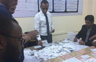 اللجنة العامة بمركز بركة السبع: 84819 صوتا للسيسي مقابل 1616 لموسى