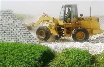 إزالة التعديات عن ألف متر من بحيرة مريوط غرب الإسكندرية