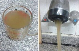 تعرف على حقيقة تلوث مياه الشرب بمحافظة القليوبية بالكلور