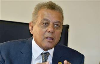 سلامة الجوهري: الترحيب الدولي بإعلان القاهرة يؤكد على استعادة مصر مكانتها