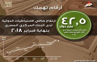 """""""معلومات الوزراء"""": ارتفاع صافي الاحتياطيات الدولية لدي البنك المركزي إلى 42.5 مليار دولار"""