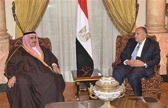 سامح شكري يؤكد دعم مصر الكامل لأمن واستقرار مملكة البحرين