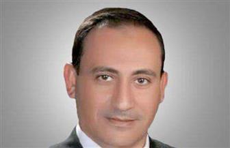 """""""كلنا معاك من أجل مصر"""" بمحافظة البحيرة منتصف الشهر الجارى"""