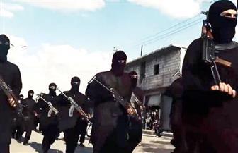 """القضاء الأمريكي يوجّه تهمة الإرهاب لأب وابنه التحقا بـ""""داعش"""" في سوريا"""