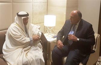 سامح شكري يعقد مباحثات ثنائية مع وزير الدولة للشئون الخارجية الإماراتي