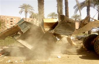 إزالة 74 حالة تعد على أراض زراعية وأملاك دولة وري بمركز أبوتيج | صور
