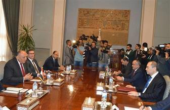 """شكري يناقش أوضاع العمالة المصرية بالأردن مع """"الصفدى"""".. ويؤكد: سنواصل الجهود لحل القضية الفلسطينية"""