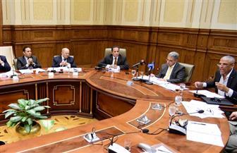 """رئيس """"محلية"""" النواب: قانون تنمية جنوب الصعيد مهم ومتوازن ويعد استحقاقا دستوريا"""