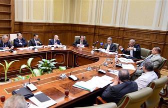 """""""محلية"""" النواب توافق على موارد هيئة تنمية جنوب الصعيد"""