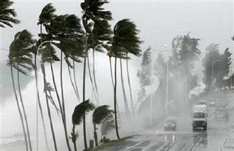 عاصفة قوية تقطع الكهرباء عن ربع منازل أكبر مدن نيوزيلندا
