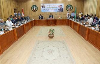 محافظة المنوفية تكرم المراكز والقرى الحاصلة على أعلى نسب مشاركة في الانتخابات الرئاسية | فيديو