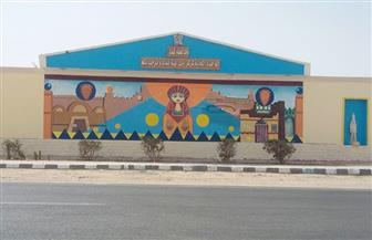 طلاب كلية التربية النوعية بقنا ينتهون من تطوير مدخل مدينة نقادة الصحراوي | صور