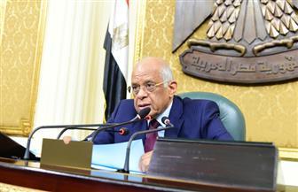 """""""تشريعية النواب"""" تقر قانون تنظيم إجراءات التحفظ على أموال جماعة الإخوان"""