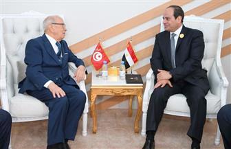 الرئيس السيسي يلتقي على هامش القمة العربية بالرئيس التونسي