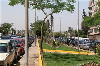 تحويلات مرورية لتطوير كوبري السيارات بتقاطع طريق النصر مع أحمد فخري وحسن المأمون