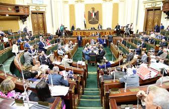 """""""النواب"""" يوافق على تعديلات قانون الأحكام الزراعية.. ننشر النص الكامل"""