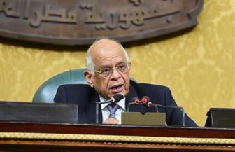 مجلس النواب يقر تعديلات قانون مرتبات الوزراء والمحافظين
