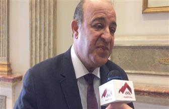 """أمين ائتلاف """"دعم مصر"""": دورنا يقتصر على حل مشكلات المواطنين"""
