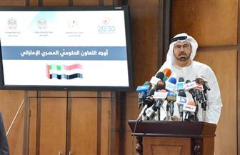 وزير شئون مجلس الوزراء الإماراتي: لدينا توجيهات بالعمل كفريق واحد مع مصر 
