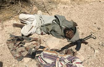 مصرع أمير التنظيم الإرهابي بسيناء في عملية ناجحة لقوات الجيش الثالث الميداني