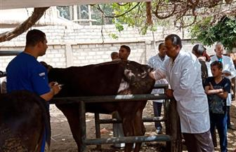 «الزراعة» تطلق قافلة بيطرية مجانية بقرى محافظة دمياط