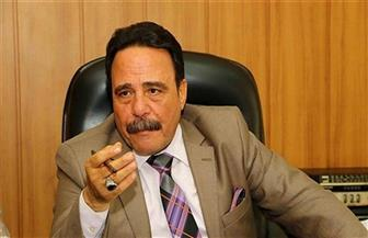 محمد سعفان: قانون التنظيم النقابي يحسن صورة مصر أمام المجتمع الدولي