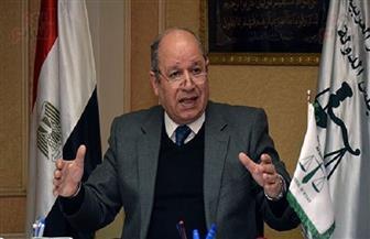 """""""أبوالعزم"""" يشارك بمؤتمر الهيئة الإدارية للانتخابات الأوروبية"""