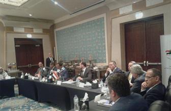 """""""الأعمال  المصري - السوداني"""" يوصي بإقامة مشروعات للبتروكيماويات والأسمدة"""