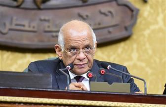 """عبد العال ينتقد نائب شمال سيناء لحضوره الجلسة مرتديا """"تي شيرت"""" و""""بنطلون جينز"""""""