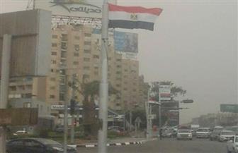 أعلام بطريق النصر ويوسف عباس والمنصة احتفالا بتحرير سيناء | صور