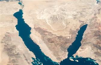 مشايخ سيناء: سنظل مرابطين في خندق واحد لنحقق النصر للوطن | صور