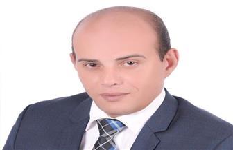 القطامي: التقارب المصري الأوروبي خطوة على طريق التحول لمركز إقليمي للطاقة