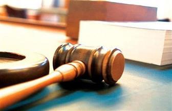 """غدا.. ثاني جلسات إعادة محاكمة 16 متهما في قضية """"التمويل الأجنبي"""""""