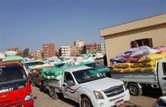 ارتفاع الكميات الموردة من القمح المحلي بمحافظة كفر الشيخ إلى 79 ألف طن